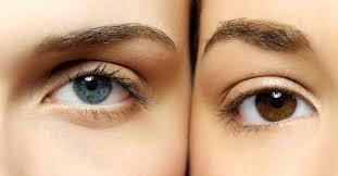 datos sobre la micropigmentacion